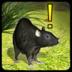 家鼠模拟器汉化版
