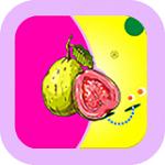 香蕉成版人性视频app安卓